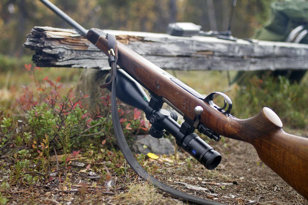 Prowadzenie broni podczas strzału - Rady Franza Albrechta cz.2